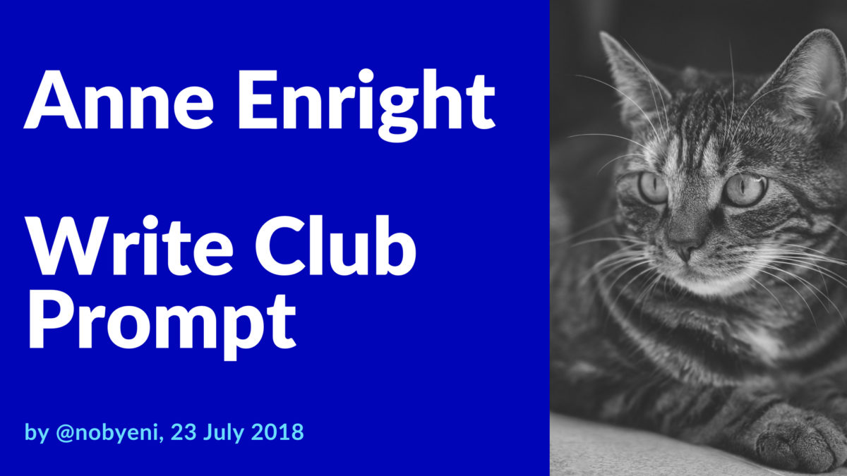Anne Enright Writing Prompt
